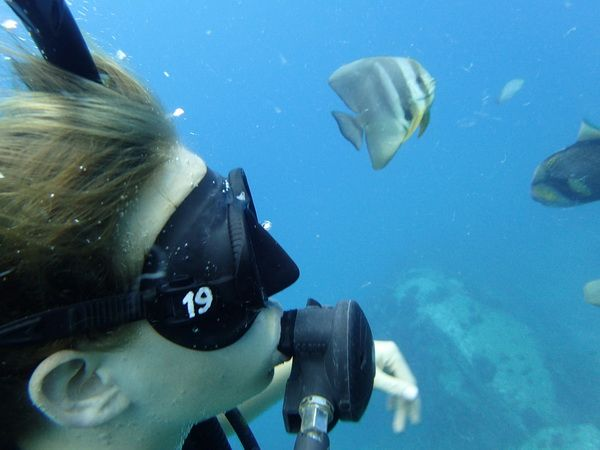 PADI courses in Koh Tao Island - PADI Advanced Open Water Diver