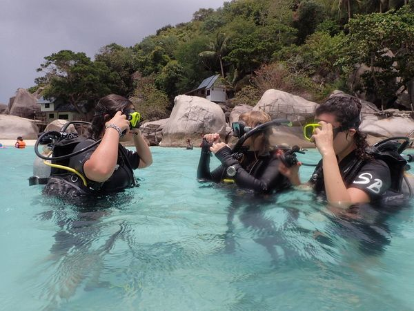PADI Open Water Diver Referral Course in Koh Tao Island - Scuba Birds Dive Center